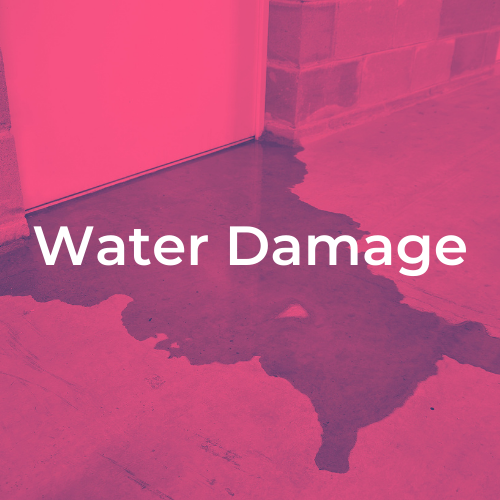 Dehumidifier For Water Damage