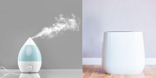 Humidifier Vs Air Purifier