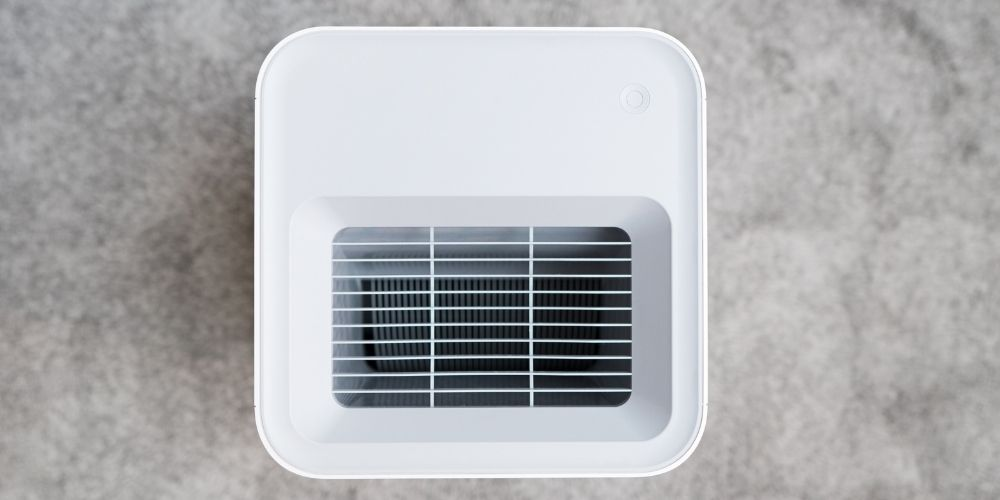 Does air purifier help with mold